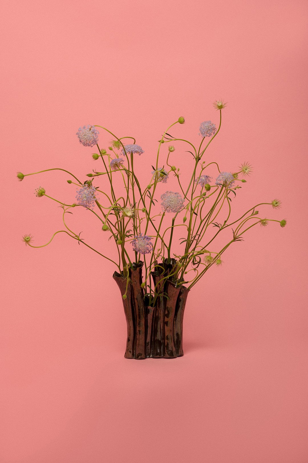 nathaleepaolinelli-vase-project-florist-05